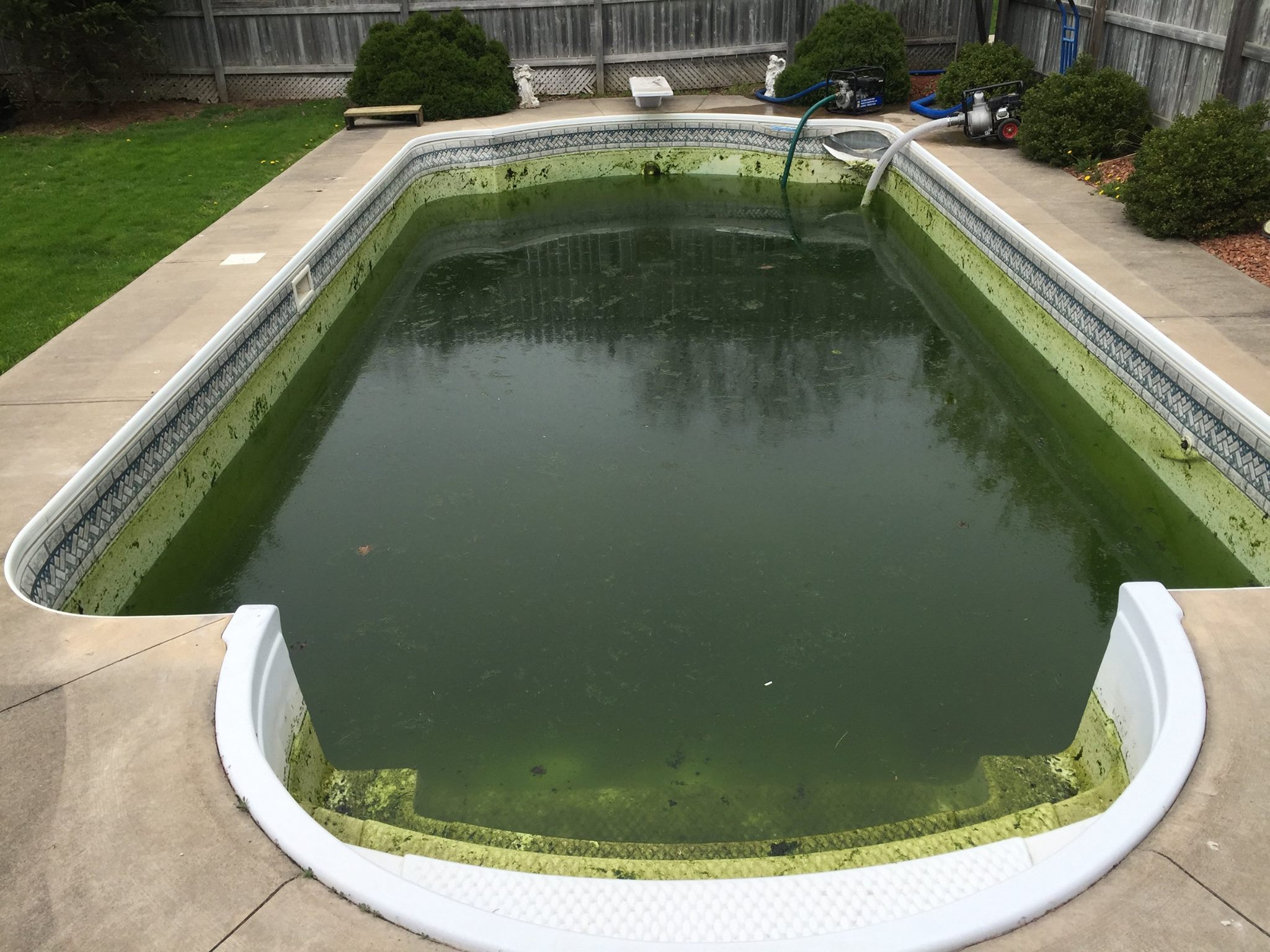 Pool_Liner_fonthill_before
